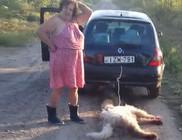 Kocsi után kötötte, majd élve elásta kutyáját egy asszony