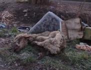 Birkavágás után: utcára dobált fél birka