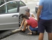 Felforrósodott autóban hagyták a kutyát