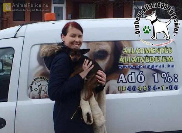 Karci az állatbarátok által felajánlott adó 1%-oknak is köszönhetően került szerető Gazdihoz
