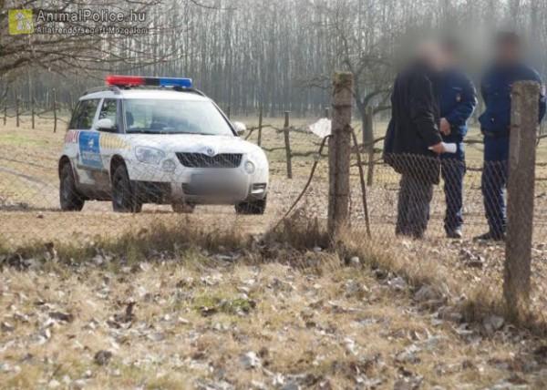 Rendőrségi intézkedés állatkínzás helyszínen