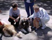 Péceli Állatbarátok Egyesülete