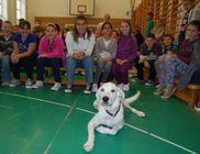 Máté Állatvédelmi Közhasznú Alapítvány