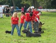 Sárvári Állatvédő és Kutyás Sport Egyesület