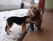 Állatmentő Szolgálat Alapítvány