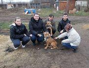 Derecskei Állatbarátok Közhasznú Egyesülete