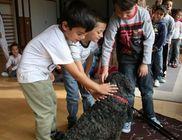 Kutyaszív Állatmentő Közhasznú Alapítvány